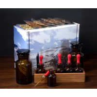 Experimenter DIY Bitters Kit in Large Gift Box