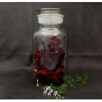 2500ml Apothecary Jar/Reagent Bottle